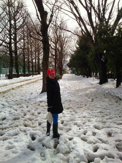 めぐ雪.jpg