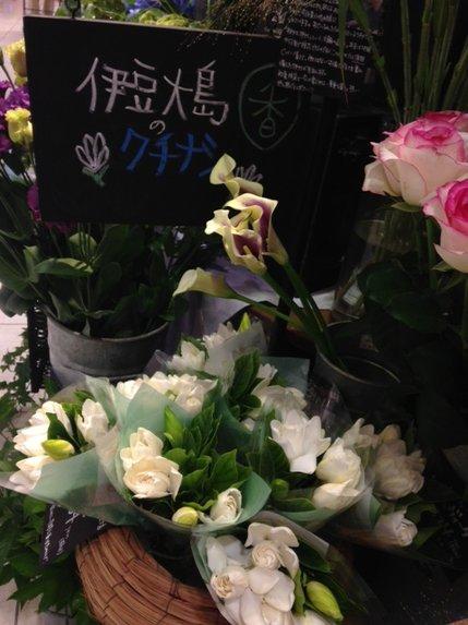 くちなしの花.JPG